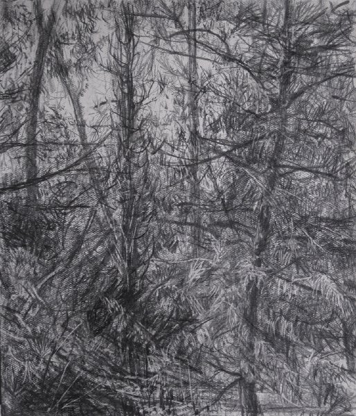 COLD NOON, 2009, pencil on paper, 11 x 9 3/4 inches